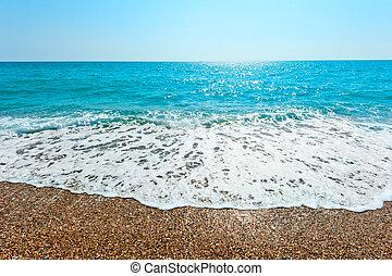 foamy wave rolls on a sandy beach