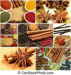Spices collage - Collage of spices