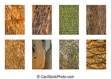 Tree Bark - Set of 8 tree bark textures