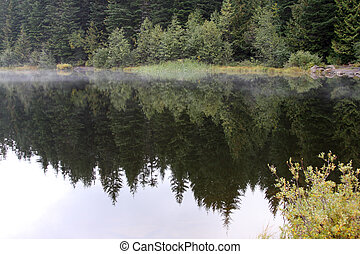 Reflection in Trillium Lake, OR Photo taken in the Mount...