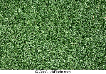 Green Grass Background - Closeup of lush green grass for...