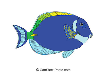 Fish - A vector of colorful fish