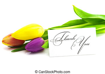 colorful tulips and a card signed thank you isolated on...