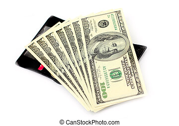 Dollars - Paper notes dollars as element of the pay system