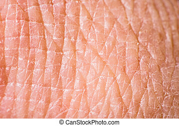 Texture of human skin. Extreme close up macro shot