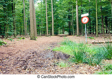 No Cell phone area - A sign in the woods near a radio...