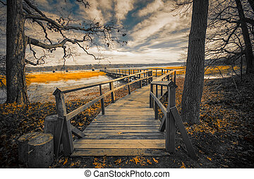 Landscape - Wooden pier and trees on cold gray day
