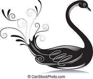 Schwarz, weißes, schwan