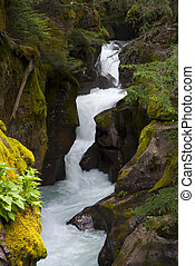 Waterfall - Picture of Avalanche Gorge in Glacier National...