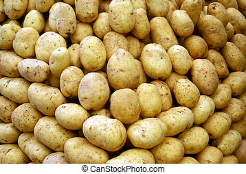 Potatos on the stall in the market