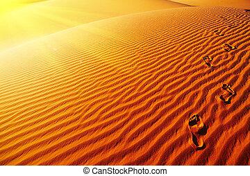 Footprints on sand dune