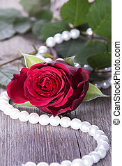 Red Rose on Timber - A Red Rose With Pearls on Timber as...