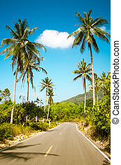Nice asphalt road with palm trees - Nice asfalt road with...