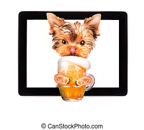 dog on tablet computer with beer