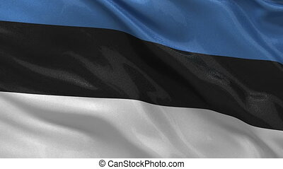 Flag of Estonia - seamless loop - Flag of Estonia waving in...