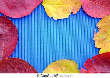 Herbstblaetter als Umrahmung - Laub umrahmt blauen...