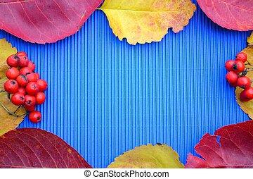 Herbstlaub und Beeren - Herbstlaub und rote Beeren