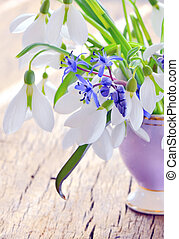 snowdrops in a vase - Beautiful bouquet snowdrops in a vase...