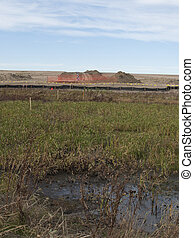 Natural gas and a wetland