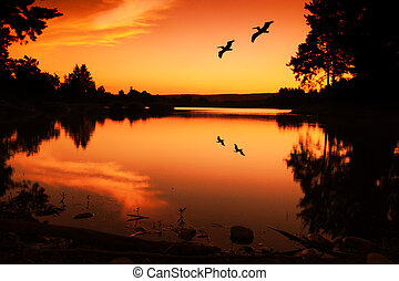 Sunset Silhouette - Summer sunset and silhouettes on the...