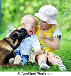 children and dog - girl and her little brother playing with...