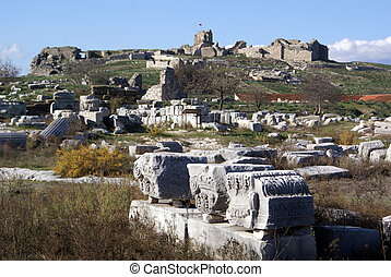 Ruins of greek city in Miletus, Turkey