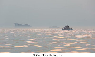 harbor security doing control to the container ships in...