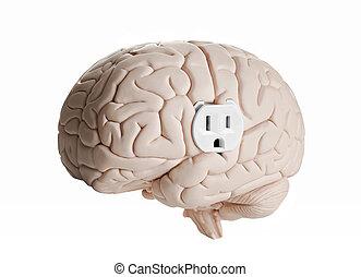 cérebro, poder