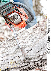 Close-up of chainsaw cutting trees and firewood for winter
