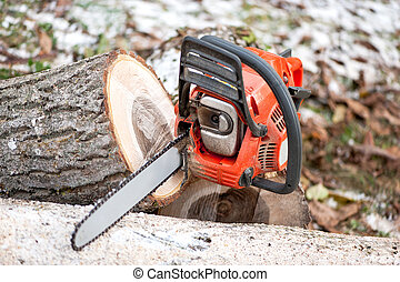 Gasoline powered chainsaw with tools and chopped trees