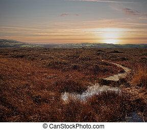 sunset over Marshland