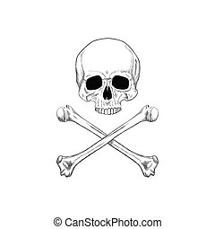 Black and White Human Skull Bones in Sketches Style -...