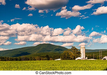 Barn and view of the Blue Ridge Mountains in the Shenandoah...