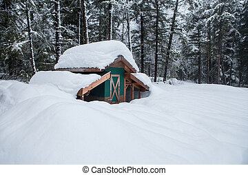 Chicken Coop in Deep Snow - Chicken coop outbuilding buried...