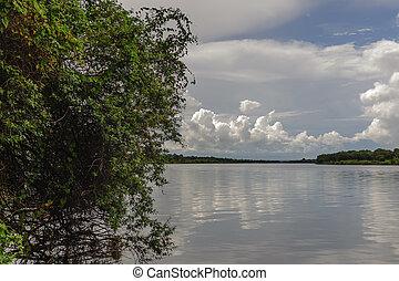 Zambezi - the zambezi river between Zimbabwe and Zambia.