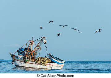 flock of birds and fishing boat in the peruvian coast at...