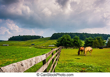 Dark clouds over horses and a fence on a farm in rural York County, Pennsylvania.