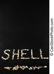 Sea Shell - The Word Shell Made of Sea Shells and Black...