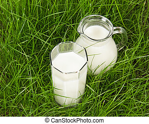 Glass and jug with fresh milk on green grass - The glass and...