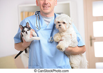 Happy vet with dog and cat, focus intentionally left on...