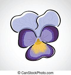 Viola (heartsease) flower, hand drawn color sketch