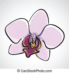 Hand drawn orchid - phalaenopsis - Hand drawn orchid...