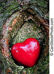 Red heart in a tree hollow Romantic symbol of love,...