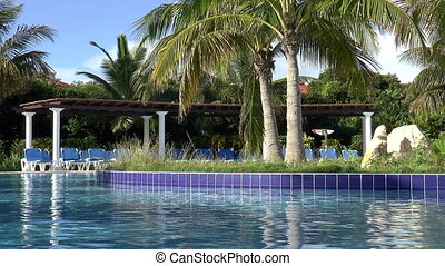 Caribbean resort. - Resort swiming pool and palm trees in...