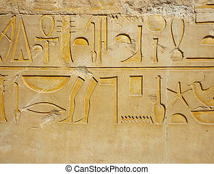 Egyptian hieroglyph - Detail of hieroglyph on wall of...