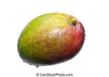 fresh multicolored mango - mango isolated on white with...