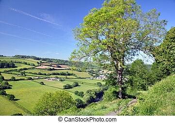 Devon view in summer - The view from Castle Hill, Great...