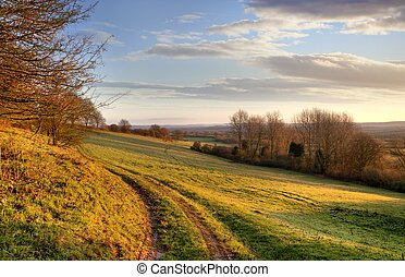 Morning landscape, England - Farm track near Chipping...