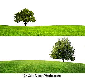 Green nature season