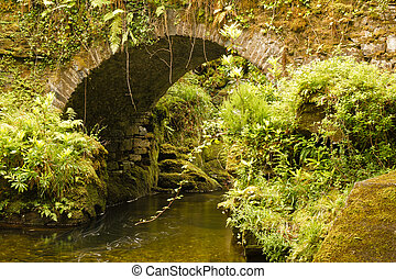 Little Bridge on Torc Mountain - Die Kleine Bruecke auf dem...